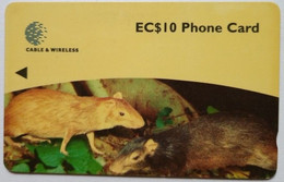 248CDMA Mouse EC$10 - Dominica