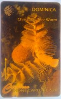 7CDMK Christmas Tree Worm - Dominica
