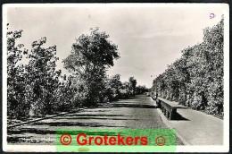 HOEK VAN HOLLAND Nieuwe Weg Ca 1955 - Hoek Van Holland