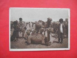 MERV Turkestan 1930x Types, Caravan Of Camels On Vacation. Russian Postcard. - Turkménistan