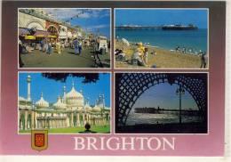 BRIGHTON  MULTI VIEW  USED 1995 - Brighton