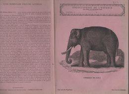 Couverture Illustrée De Cahier D'écolier : Encyclopédie De L'enfance N°36 éléphant Des Indes (PPP8214) - Animals