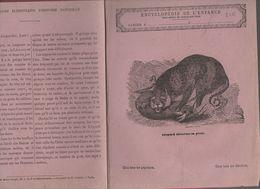 Couverture Illustrée De Cahier D'écolier : Encyclopédie De L'enfance N°9 Le Léopard  (PPP8216) - Animals