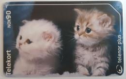 Norway  Cats, N  257 - Norway