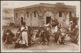 Caravan At Rest, Aden, C.1920 - Lehem & Co RP Postcard - Yemen