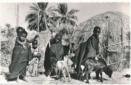 MAURITANIE - Dans Le Sud - C. Lacroix, Nouakchott - Mauritania