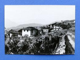 Cartolina Cortesano - Panorama - 1967 - Trento