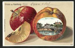 Passepartout-Lithographie Hamburg-St. Pauli, Fährhaus St. Pauli Im Apfel - Ansichtskarten