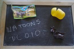 Kinder  Dc010 - MonoBlocks