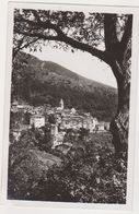26514 Cote D'Azur Martin Vesubie -station Sports D'hivers -ed Tordo Tabac - Gilleta -arbre - France