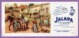 Buvard Jalapa Bordeaux Cheval - Wash & Clean