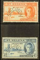 """1946 Victory Set Complete, Perforated """"Specimen"""", SG 141s/142s, Very Fine Mint. (2 Stamps) For More Images, Please Visit - Saint Helena Island"""