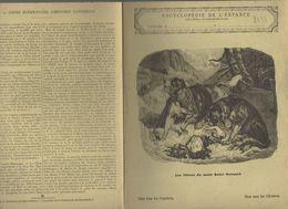Couverture Illustrée De Cahier D'écolier : Encyclopédie De L'enfance N°13 Les Chiens Du Mont Saint Bernard (PPP8223) - Animals