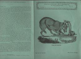 Couverture Illustrée De Cahier D'écolier : Encyclopédie De L'enfance N°18 Loup Pris Au Piège (PPP8226) - Animaux