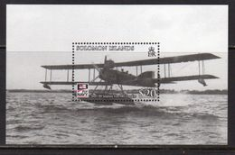 Solomon Islands 2009 Centenary Of Naval Aviation Aeroplane MS, MNH, SG 1273 (B) - Solomon Islands (1978-...)