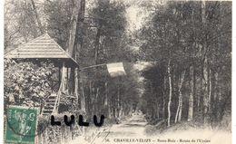DEPT 92 : édit. ? : Chaville Vélizy Sous Bois Route De L Ursine - Chaville