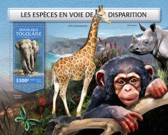 TOGO 2018 MNH** Elephant Elefant Endangered Species S/S - OFFICIAL ISSUE - DH1813 - Elefanten