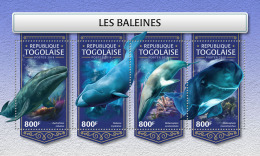 TOGO 2018 MNH** Whales Wale Baleines M/S - IMPERFORATED - DH1813 - Wale