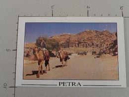 Petra - Jordan - Non Viaggiata - (3460) - Giordania