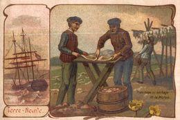 CHROMO  TERRE-NEUVE TRANCHAGE ET SECHAGE DE LA MORUE - Trade Cards