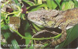 Cuba - Etecsa - Chameleon - CU-087 - 05.2000, 30.000ex, Used - Cuba