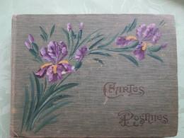 Album  De Cartes Postales Anciennes  De France Dont Villages  Et Animations  250 Cartes - Cartes Postales