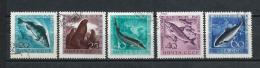 URSS546) 1959 - Pesci E Animali Marini -Serie Cpl 5val. USED - Usati