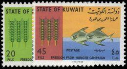 Kuwait 1966 Freedom From Hunger Unmounted Mint. - Kuwait