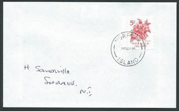 NORFOLK IS 1995 Local Cover With 5c Red Hibiscus Local Stamp...............42779 - Norfolk Island