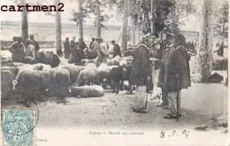 RARE CPA : CAHORS LE MARCHE AUX MOUTONS FOIRE 46 LOT - Cahors