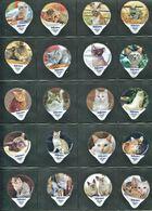 3257 A - Chats - Serie Complete De 20 Opercules Suisse Cremo - Opercules De Lait