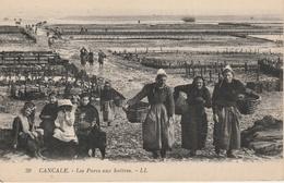18 / 4 / 204  -  CANCALE  ( 35 )  LES  PARCS  À  HUÎTRES  ( AVEC  PERSONNAGES ) - Cancale