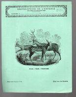 Couverture Illustrée De Cahier D'écolier : Encyclopédie De L'enfance N°58: Daim Cerf Chevreuil  (PPP8232) - Animals