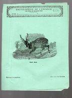 Couverture Illustrée De Cahier D'écolier : Encyclopédie De L'enfance N°57: Le Cerf Axis (PPP8234) - Animaux