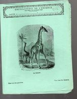 Couverture Illustrée De Cahier D'écolier : Encyclopédie De L'enfance N°60 La Girafe (PPP8236) - Animaux