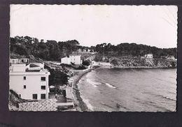 CPSM 83 - SANARY - La Gorguette - TB PLAN Maisons Habitations Au Bord De L'eau Petite Animation Jolie Oblitération 1952 - Sanary-sur-Mer