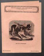 Couverture Illustrée De Cahier D'écolier : Encyclopédie De L'enfance N°12 Les Chiens Domestiques (PPP8243) - Animaux