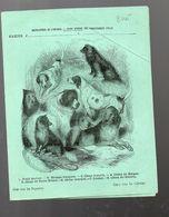 Couverture Illustrée De Cahier D'écolier : Encyclopédie De L'enfance N°17 Chiens Divers (PPP8245) - Animals