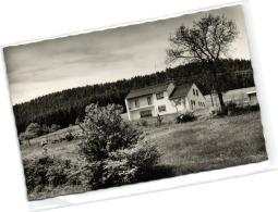 1 Ansichtkarte Gerolstein Mullenborn Haus Waldfrieden - Gerolstein
