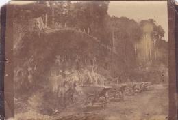AOF  :  Photo Unique  Forêt Africaine .Ouvriers Creusant Dans La Roche  Wagonnets Extraction De Minerai Ou Forage  ??? - Afrique