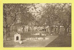 * Oostakker - Oostacker (Gent - Gand) * (27) Broeders Van OLV Van Lourdes, école, School, Neefhof, Basse Cour, Poulet - Gent
