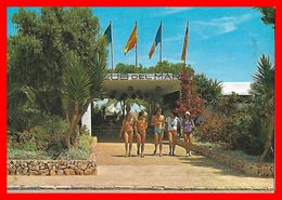 CPSM/gf  MALLORCA (Espagne)   Club Del Mar, Animé...C397 - Mallorca