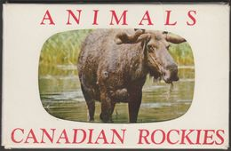 Animals Of The Canadian Rockies, 1957 - Smith Lithograph Co Eight Postcards - Unclassified