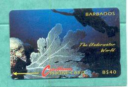 "BARBADOS: 1993 BAR-9C ""Underwater"" No Logo. B$ 40 CN: 9CBDC. Rare (22.000ex) Used - Barbados"