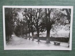 Cluny ;  Promenade Du Fouettin - Cluny