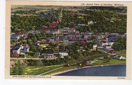 PETOSKEY, Michigan, USA, Bird's Eye View, Old Linen Curteich Postcard - Etats-Unis