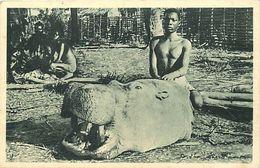 Themes Div - Ref W587- Hippopotames - Congo - Tete D Hippopotame - Carte Bon Etat  - - Hippopotames