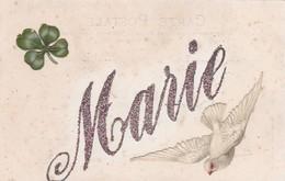 CARTE PRENOM MARIE / STRASS ET CHROMOS - Firstnames