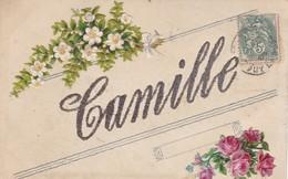 CARTE PRENOM CAMILLE / STRASS ET CHROMOS - Firstnames
