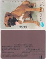 40/ China, City Beijing; The Dog, 100 Ut. - China